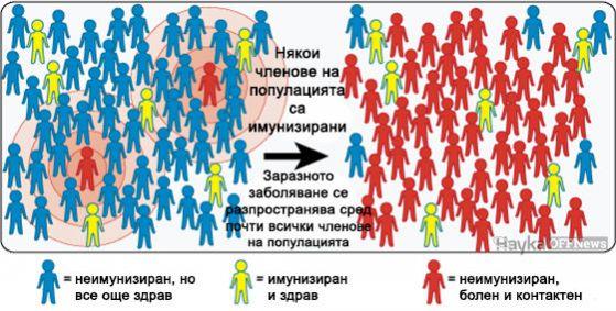 Колективен имунитет 2